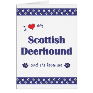 Carte J'aime mon limier écossais (le chien femelle)