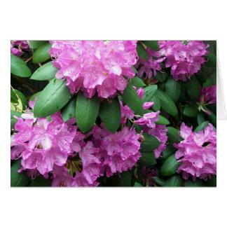 Carte Jardin de rhododendron