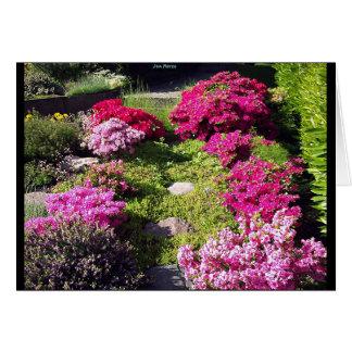 Carte Jardins Bloomy 2