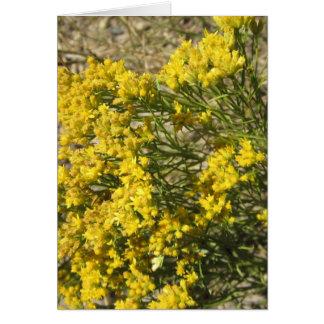 Carte jaune de fleur sauvage de prairie