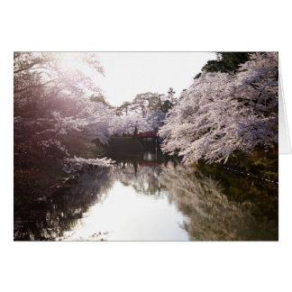 Carte Je rêve de Sakura