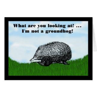 Carte Jour de Groundhog heureux avec l'humour drôle