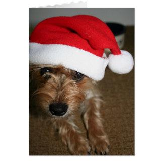 Carte Joyeux Noël (de Luna)