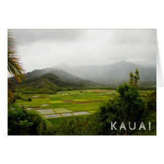 Carte Kauai, Hawaï • Champs luxuriants • Scène de