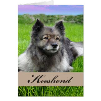 Carte Keeshond, chien sur l'herbe, intérieur vide
