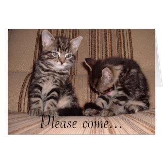 Carte la chaton-sur-chaise, veuillez venir…