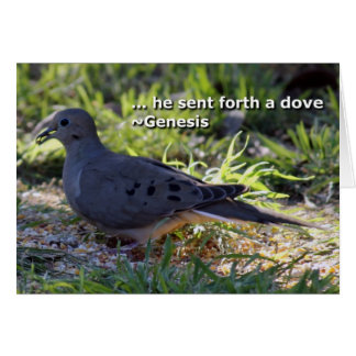 Carte La colombe