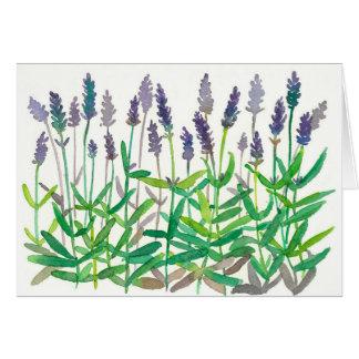 Carte La lavande fleurit le Merci de fines herbes d'art