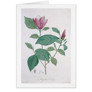 Carte La magnolia se décolorent, gravé par Legrand