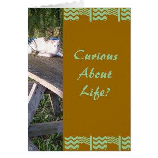 Carte La vie de CuriousAbout ?
