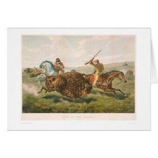 Carte La vie sur la prairie : La chasse de Buffalo