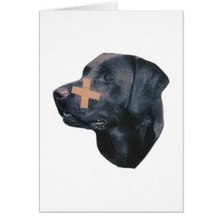 Carte Labrador retriever à la Bande-Aide