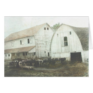 Carte Laiterie amish