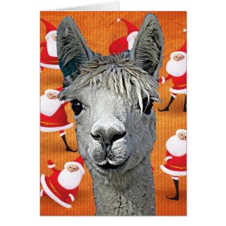 Carte L'alpaga YouBeaut fait sur commande conçoit Noël