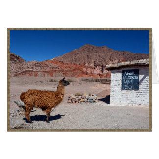 Carte Lama dans Quebrada de Cafayate, Argentine