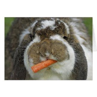 Carte Lapin drôle de la Hollande Lop mangeant la carotte