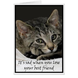 Carte Le chat triste présente des condoléances sur la