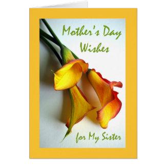 Carte Le jour de mère pour la soeur, zantedeschias