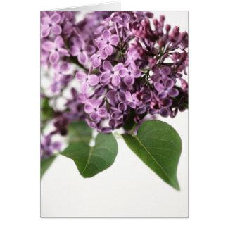 Carte Le lilas fleurit la beauté de parfum de printemps