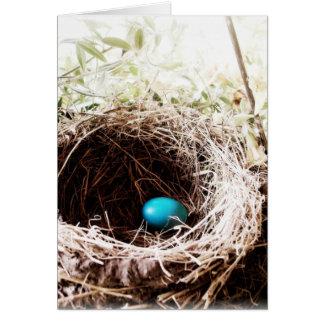 Carte Le nid de Robin
