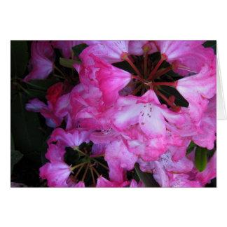 Carte Le rhododendron fleurit #1