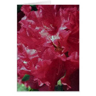 Carte Le rhododendron fleurit #4