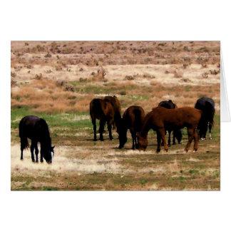 Carte Le troupeau de Remuda frôle - des chevaux de vache