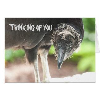Carte Le vautour… pensant à vous cardent