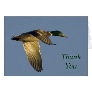 Carte le vol de canard en ciel ouvert vous remercient