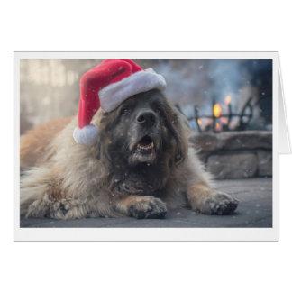 Carte Leonberger Père Noël