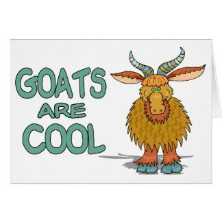 Carte Les chèvres sont fraîches