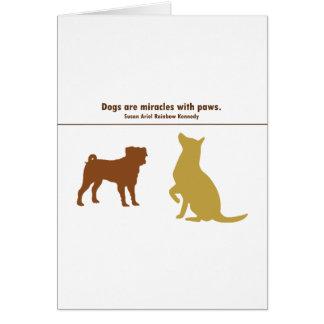Carte Les chiens sont des miracles