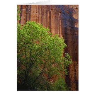 Carte Les Etats-Unis, Utah, falaises de vermillon de