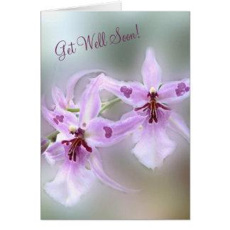 Carte Les orchidées obtiennent bien bientôt !