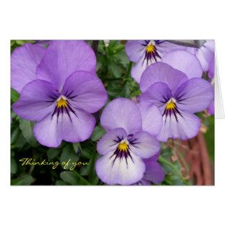 Carte Les pensées/violettes bleues pensant à vous