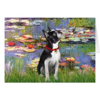 Carte Lis #2 - Boston Terrier 2
