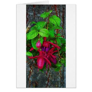 Carte Long magenta fuchsia
