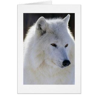Carte Loup blanc