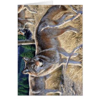 Carte Loup dans la forêt d'hiver