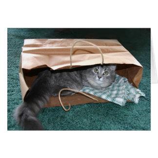 Carte L'Outa du chat le sac…
