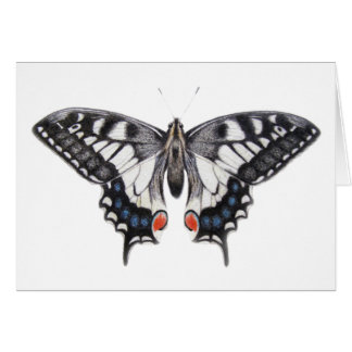 Carte Machaon 2012