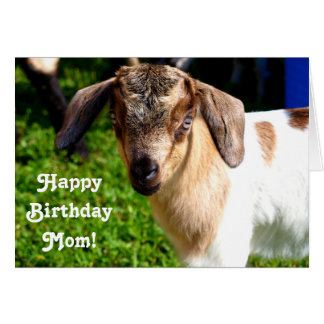 Carte Maman de joyeux anniversaire d'enfant préféré