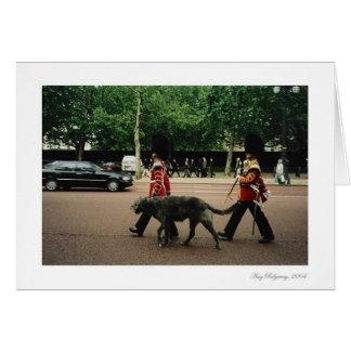 Carte Marcheurs royaux de chien