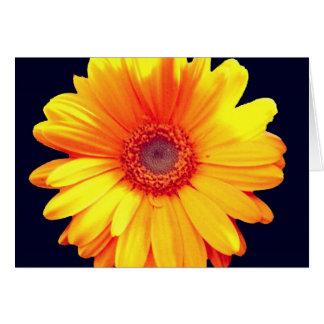 Carte Marguerite jaune