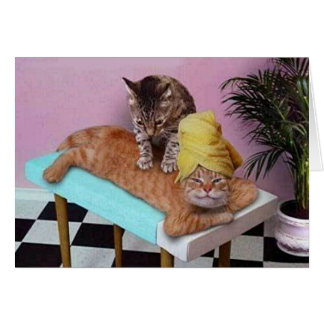 Carte Massage drôle de chat
