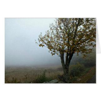 Carte Matin brumeux à la loge de lac mountain, VA