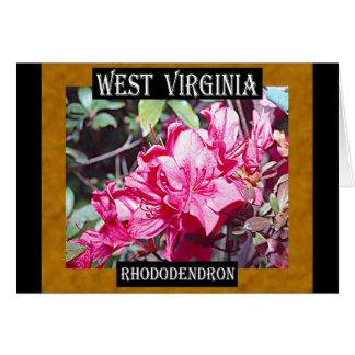 Carte Maximum de rhododendron de la Virginie Occidentale