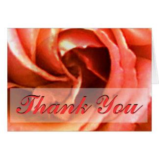 Carte Merci rose de Cantorbéry les cadeaux de Zazzle de
