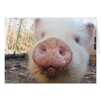 Carte Mini museau personnalisé de porc