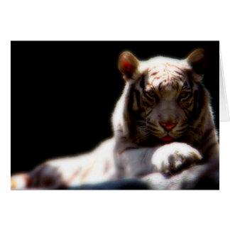 Carte Mirage blanc de tigre